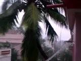 Cyclone Thane Hits Tamil Nadu, Causes Heavy Rain