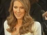 Celine Dion Canels Her Las Vegas Show