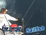 Deep Sea Fishing Fort Lauderdale