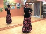 Flamenco Dance Step Combo Moves