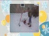 Here&#039 S Another Winter Horror Story Submitted For The Snowblower Contest