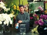 How To Add To A Flower Vase To Prolong Flower Life