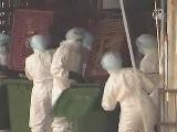 H5N1 Bird Flu Appears In Hong Kong