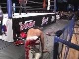 Hiroshi Tanahashi Vs Toru Yano NJPW