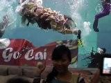 Indonesia Performs Underwater Chinese Opera