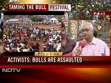 Jallikatu Festival In Tamil Nadu In Full Swing Despite Centre&#039 S Ban On Bull Fighting