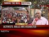 Jallikatu Festival In Tamil Nadu In Full Swing Despite Centre&#039 S Ban On Bull Fighting