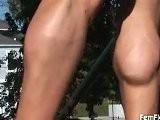 Kristy Hawkins&#039 Calves