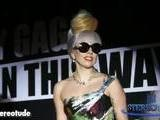 Lady Gaga Not Surprised By Whitney Houston Death
