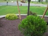 Landscapers Freehold Nj