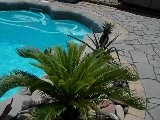 Landscapers Manalapan Nj