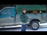 Maine Coyote Hunting | Maine Coyote Hunting With Hounds | 207.540.4101