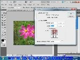Photoshop CS5 Tutorial Changing The Canvas Size Adobe Training Lesson 14.1