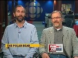 Professors Lee Foote And Andrew Derocher Debate Whether The Polar Bear Should Replace The Beaver As Canada&#039 S National Emblem