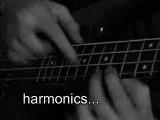 Slap Bass Solo Speed Bass Guitar Player By Willy Jimenez