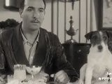 Uggie, Malachy And Brigitte Are Most Popular Celebrity Dogs