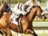 Potrero Grande Stakes