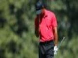 Time Out For Tiger Woods