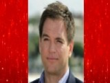 'NCIS' Star Michael Weatherly Charged With DWI