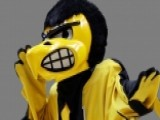 'Campus Craziness': Should Herky The Hawk Smile More