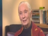 Power Player Plus: Jane Goodall