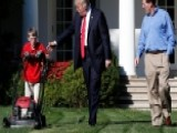 11-year-old Mows White House Lawn With Trump: Must-see Video