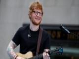 'Cat Heaven Island' Begs Ed Sheeran To Visit