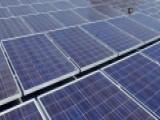 Debate Sparked Over Trump's Tariffs On Solar Panels