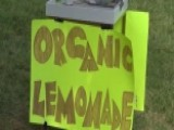 9-year-old Robbed At Gunpoint At His Lemonade Stand