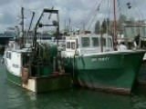 America's Oldest Fishing Industry Sinking Fast