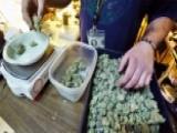 Activists Sue To Block Marijuana Sales Tax In Colorado