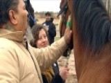 After The Show Show: Reining In PTSD
