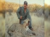 American Pastime? Taxidermist Defends Hunting