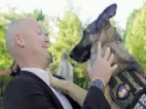 Airline Stops Veteran, Service Dog From Boarding Flight