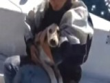 Adorable Puppy Lost At Sea Gets Rescued By Sailors