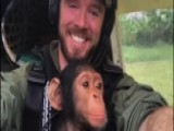 Anti-poaching Pilot Flies Baby Chimpanzee To Safety