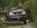 Accident Turns Deadly When Tree Falls On An SUV