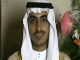 Al Qaeda On The Rise?