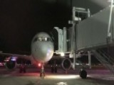 Bird Strikes Force Two Emergency Landings In Illinois