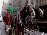 Budweiser Clydesdales Kick Off Holiday Season With US Tour