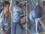 Brazen Thief Tries To Steal Exotic Bird From Pet Store