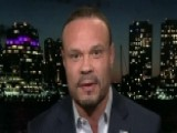 Bongino: Democrats Have Blood From Their Fangs For Trump
