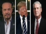 Bongino: Trump Shouldn't Talk To Mueller, It's A Trap