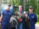 Coast Guard Petty Officers Save Baby Eagle