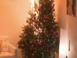Christmas Safety Tips: Trees Can Become Infernos In Seconds