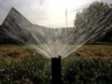 Calif. Governor Orders Permanent Water Conservation Efforts