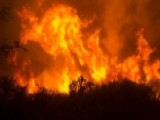 California Wildfires Destroy Thousands Of Structures And Vineyards
