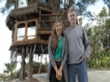 Courts: Florida Couple's 'getaway' Tree House Must Come Down