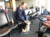 Corgi Comforts Stranger Who Recently Lost His Own Dog