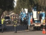 California Tree Trimmer Dies After Being Electrocuted